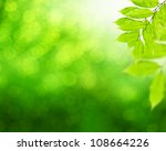natural green background with... | Shutterstock . vector #108664226