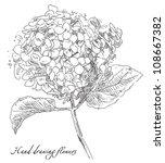 hand drawn flowers | Shutterstock .eps vector #108667382