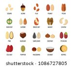 nut types ith signed names... | Shutterstock . vector #1086727805