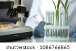 laboratory engineer inventing... | Shutterstock . vector #1086766865