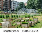 urban farming sustainability... | Shutterstock . vector #1086818915