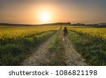 Young Brunette Woman Wandering...