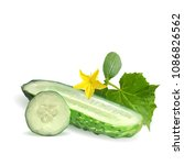 fresh  nutritious  tasty green... | Shutterstock .eps vector #1086826562