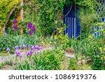 beautiful home garden allotment ... | Shutterstock . vector #1086919376