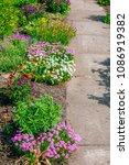 beautiful home garden allotment ... | Shutterstock . vector #1086919382