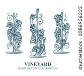 Vineyard Hand Drawn Sketch....