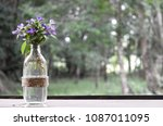 White And Violet Flower In The...