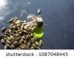 raw organic green cardamom or...   Shutterstock . vector #1087048445