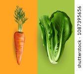carrot and lettuce. vector... | Shutterstock .eps vector #1087395656