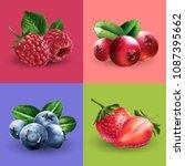 raspberries  cranberries ... | Shutterstock .eps vector #1087395662