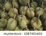 many durians are waiting for... | Shutterstock . vector #1087401602