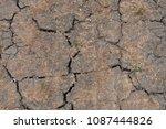 background texture of dry... | Shutterstock . vector #1087444826