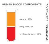 human blood components.... | Shutterstock .eps vector #1087483772