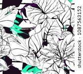 tropical  modern stripes motif. ... | Shutterstock .eps vector #1087563152