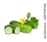 fresh  nutritious  tasty green... | Shutterstock .eps vector #1087599506