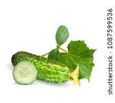 fresh  nutritious  tasty green... | Shutterstock .eps vector #1087599536