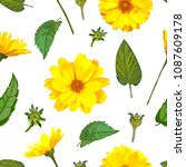 seamless pattern with... | Shutterstock .eps vector #1087609178