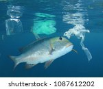 fish in polluted sea. seafood... | Shutterstock . vector #1087612202