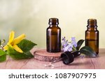 essential oils and flowers   Shutterstock . vector #1087907975