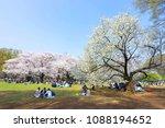 tokyo  japan   april 2  2018 ... | Shutterstock . vector #1088194652