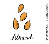 vector drawing nuts of almond ...   Shutterstock .eps vector #1088203598