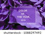 trendy color cncept set with... | Shutterstock . vector #1088297492