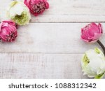 pink and white lotus flowers on ... | Shutterstock . vector #1088312342