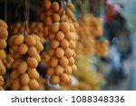 group of yellow plumage ... | Shutterstock . vector #1088348336