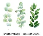 set of green branches on white... | Shutterstock . vector #1088359028