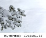 branches of spruce trees in the ... | Shutterstock . vector #1088651786
