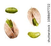 pistachios on white background. ... | Shutterstock . vector #1088697722