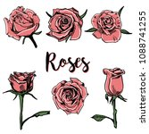 vector hand drawn roses  | Shutterstock .eps vector #1088741255