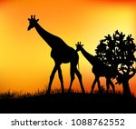 two giraffes in the savannah...   Shutterstock .eps vector #1088762552
