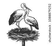 stork in nest bird animal... | Shutterstock .eps vector #1088879252