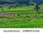 thailand in green season   Shutterstock . vector #1088901446