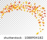 oak and maple leaf abstract... | Shutterstock .eps vector #1088904182