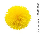 head of dandelion isolated on... | Shutterstock . vector #1088926886