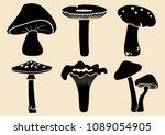 Set Of Different Mushrooms....