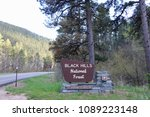 Welcome to Black Hills National Forest