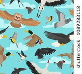 bird vector cartoon flying... | Shutterstock .eps vector #1089283118