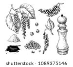 black pepper vector drawing set.... | Shutterstock .eps vector #1089375146