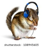 Stock photo funny chipmunk listening to music on headphones isolated on white 108945605