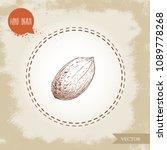 pecan nut. hand drawn sketch... | Shutterstock .eps vector #1089778268