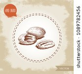 pecan nuts. hand drawn sketch... | Shutterstock .eps vector #1089782456