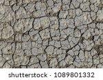 texture of dry cracked... | Shutterstock . vector #1089801332