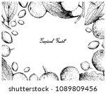 tropical fruit  illustration of ... | Shutterstock .eps vector #1089809456