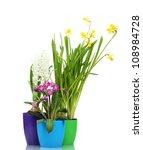 beautiful spring flowers in...   Shutterstock . vector #108984728