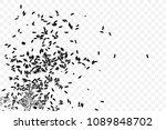 jasmine rice on transparent... | Shutterstock .eps vector #1089848702