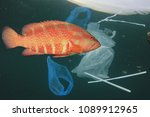 plastic pollution problem. fish ... | Shutterstock . vector #1089912965