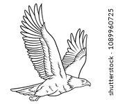 bald eagle sketch. this vector... | Shutterstock .eps vector #1089960725